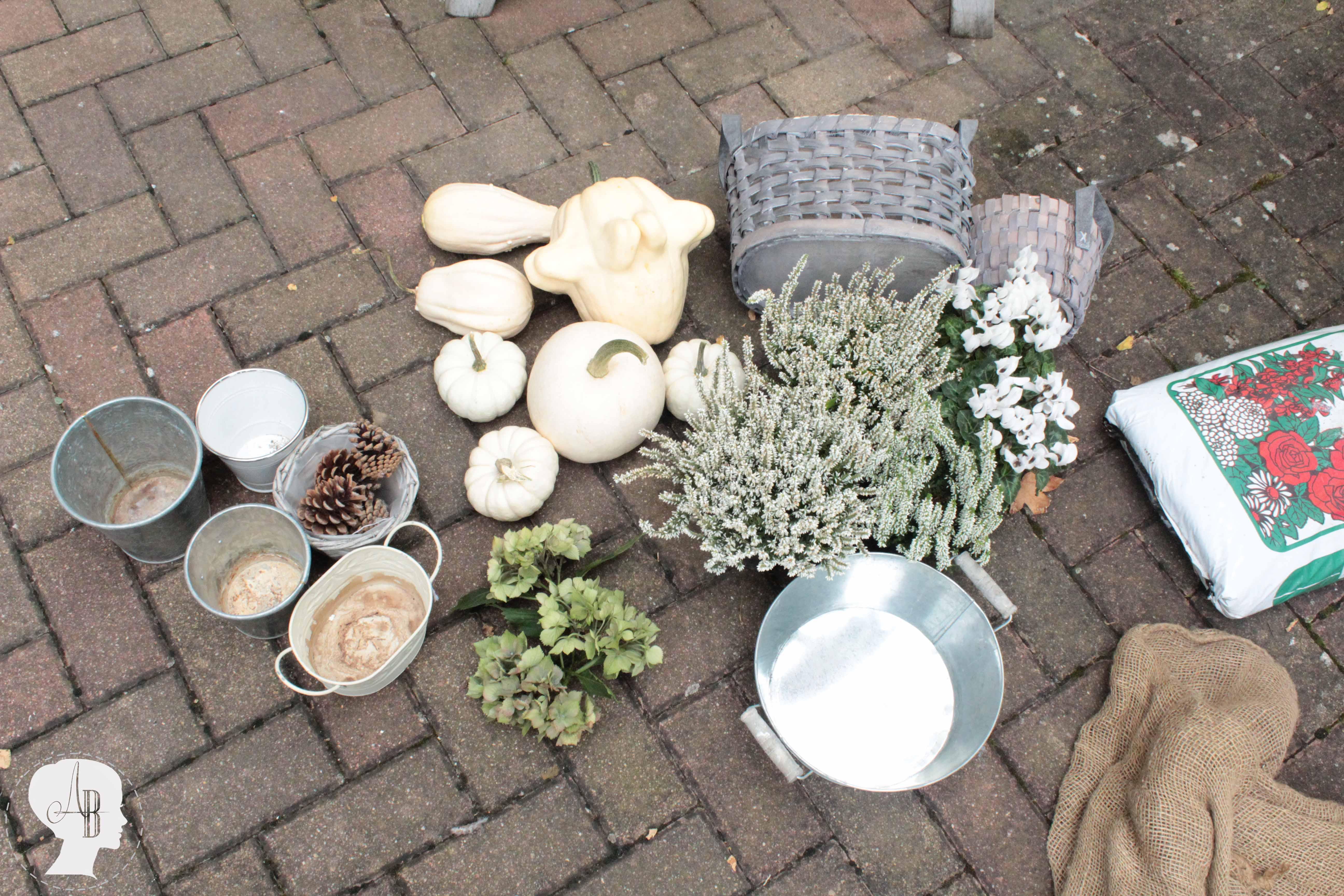 DIY Mein Dekotipp für den Herbst weiße Kürbisse